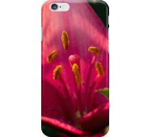 Lily iPhone case iPhone Case/Skin
