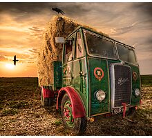 Summers Harvest Photographic Print