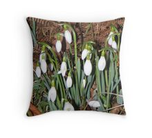 snowdrops in the dusk Throw Pillow