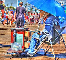 Summer at the Pier by lisa roberts