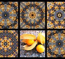 Kaleidoscopes with a tropical flair by Esperanza Gallego