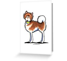 Alaskan Malamute Playful Redhead Greeting Card