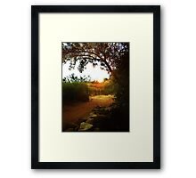 The Sun and The Vine Framed Print