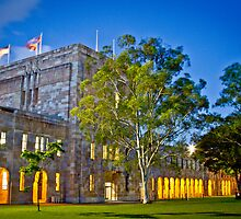 Twilight - UQ Campus by Ricky Barron