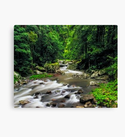 Heart of the Valley Canvas Print