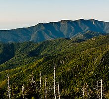 Smoky Mountains View from Clingmans Dome by pharris1