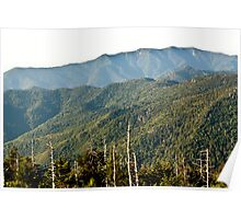 Smoky Mountains View from Clingmans Dome Poster