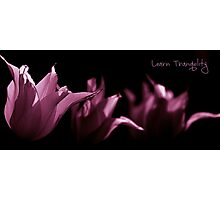 Learn Tranquility Photographic Print