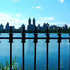 View from Central Park by Ellen  Hagan