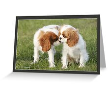 Cavalier Puppies saying hello Greeting Card