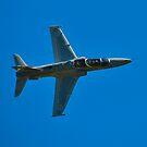BAe 127 Hawk, A27-19, 76 Squadron, RAAF Williamtown by Tim Pruyn