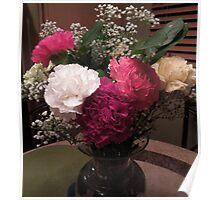 Lovely Carnations....... Poster