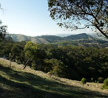 Valley of a Thousand Hills - Strath Creek Victoria by OzNatureshots
