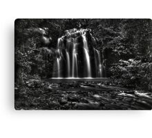 Ellinjaa Falls HDR - QLD - Australia Canvas Print