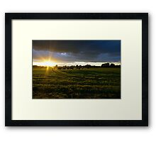 Sunset Cows  Framed Print