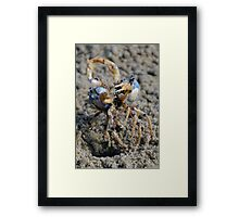 Gladiators Framed Print