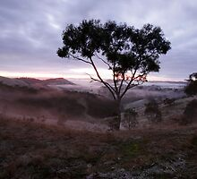 Oz Nature Shots by Emmy Silvius