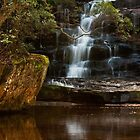 Water Hole by Specka