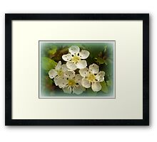 Golden sparkles Framed Print