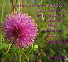 Jonah 3:5 - The people of Nineveh BELIEVED God by aprilann