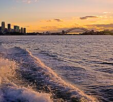 Sydney Harbour Sunset by bazcelt