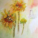Transitions - Sunflower 2 by bevmorgan