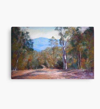 'High Country Track' Canvas Print
