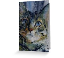 Mystery Tabby Greeting Card