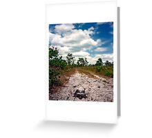 Nesting Softshell #2. Greeting Card