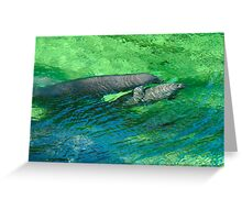 Manatee Family. Blue Spring S.P. Greeting Card
