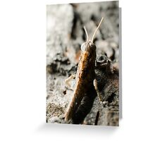 Tree hopper! Greeting Card