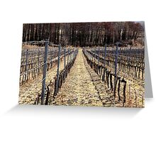 Vineyard Rhythm IV. 2011 Greeting Card