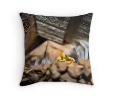 Swallows Nest Throw Pillow