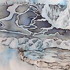 seagull  by Hannah Clair Phillips
