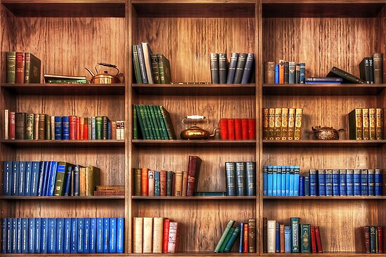 Book Shelf by Svetlana Sewell