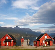 Red houses in a Norwegian fjord by intensivelight