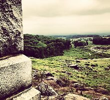 Gettysburg Battlefield II by SylviaS