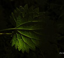 GLOW LEAF  by RED-RABBIT