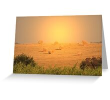 Harvest Greeting Card