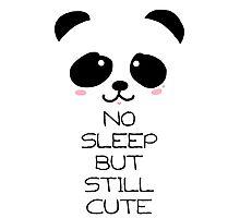 eyebags Panda Photographic Print