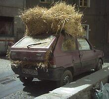 Fiat panda 4x4 hay oversize by ariostoi