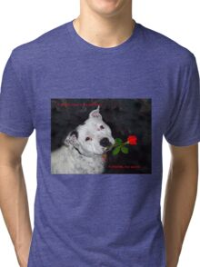 For the Love of Staffies Tri-blend T-Shirt