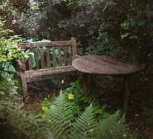 Shady Haven by Carol Bleasdale