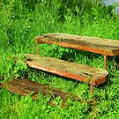 A Rustic Seat By An Irish Lake by Fara