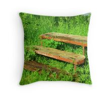 A Rustic Seat By An Irish Lake Throw Pillow