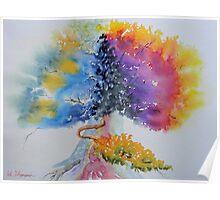 Aquarelle Live Oak Poster