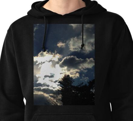 Sunny Snowy Day Pullover Hoodie