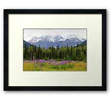 Mount Robson Framed Print
