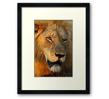 Most wanted! Framed Print