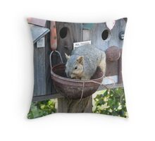 Cute Photograph of a Squirrel Eating Out of Basket Throw Pillow